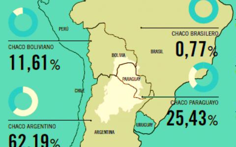 Bolivia en el ojo de la deforestación: el Gran Chaco en peligro